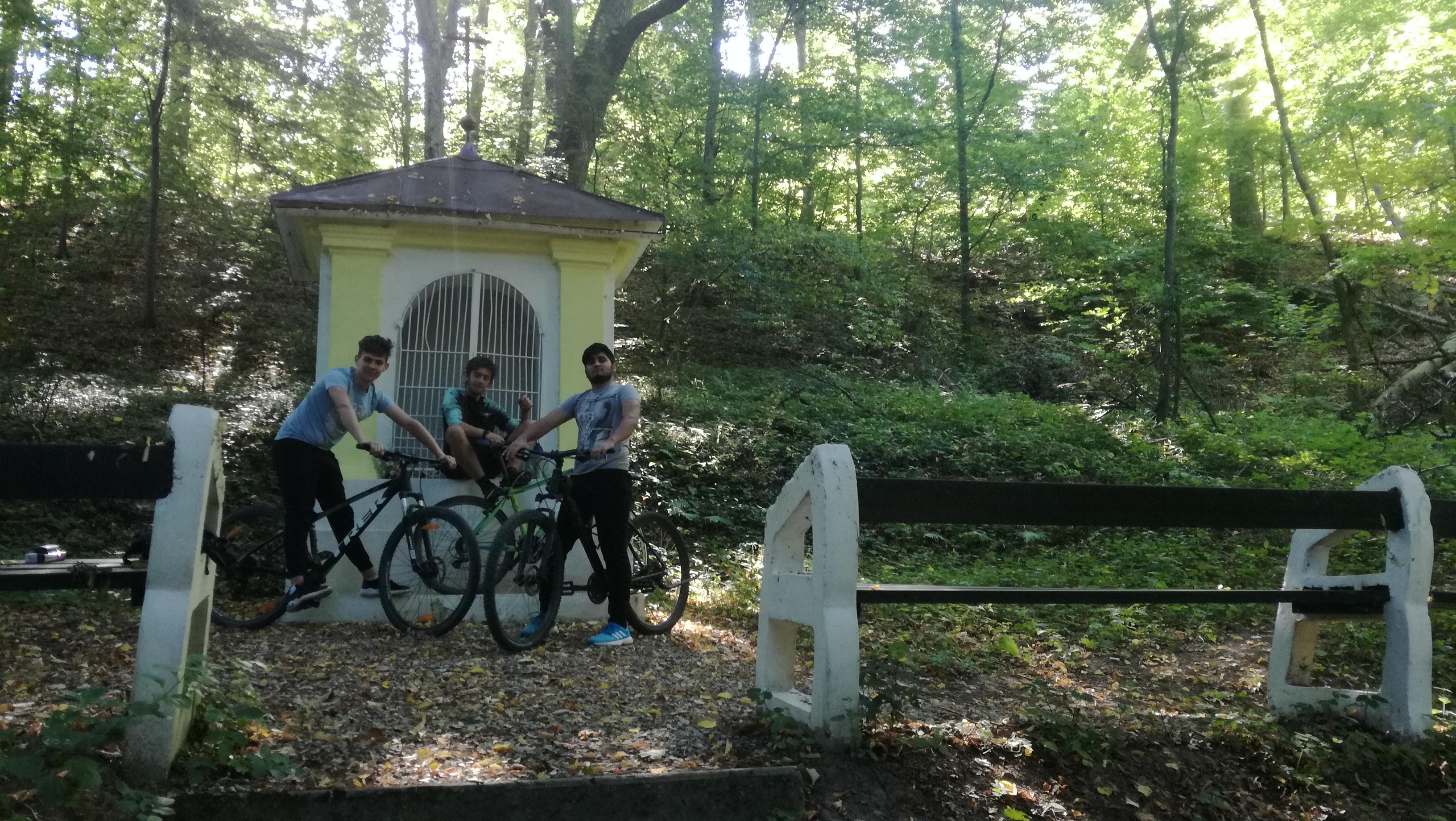 tzk_bike3.jpg